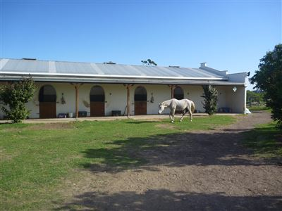 Farms for sale in Lillyfontein