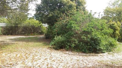 Rouxville property to rent. Ref No: 13396207. Picture no 12