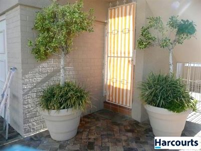 Bantry Bay property to rent. Ref No: 13396894. Picture no 4