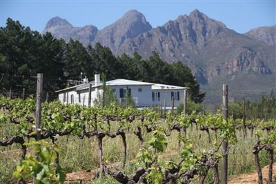 Paarl property to rent. Ref No: 13396904. Picture no 13