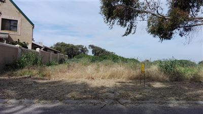 Saldanha property for sale. Ref No: 13397409. Picture no 1
