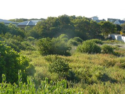 Stilbaai Wes property for sale. Ref No: 13394441. Picture no 1
