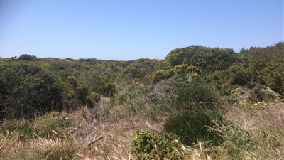 Yzerfontein property for sale. Ref No: 13401270. Picture no 1