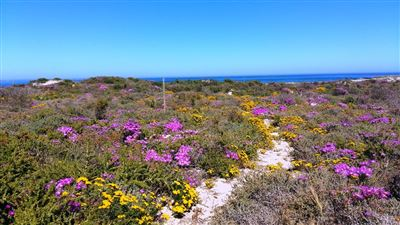 Vacant Land for sale in Cape St Martin Private Reserve