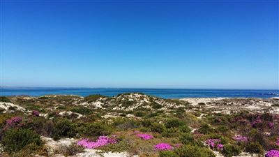 Cape St Martin Private Reserve property for sale. Ref No: 13402371. Picture no 3