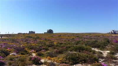 Cape St Martin Private Reserve property for sale. Ref No: 13402371. Picture no 7