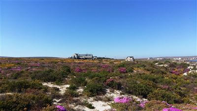Cape St Martin Private Reserve property for sale. Ref No: 13402371. Picture no 8