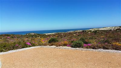 Cape St Martin Private Reserve property for sale. Ref No: 13402371. Picture no 10