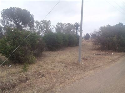 Bloemspruit property for sale. Ref No: 13405302. Picture no 1