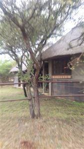 Louis Trichardt property for sale. Ref No: 13407660. Picture no 10