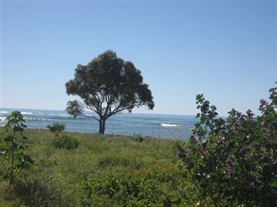 Sandy Point property for sale. Ref No: 13464450. Picture no 2
