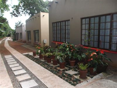 Umzumbe property for sale. Ref No: 13447006. Picture no 1