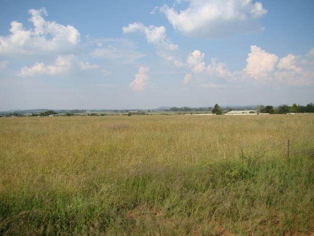 160 ha of grazing for cattle