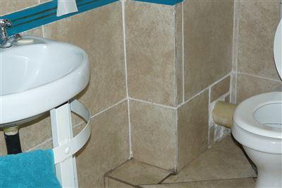 Parys property for sale. Ref No: 13454975. Picture no 14