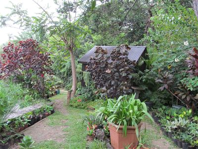 Umzumbe property for sale. Ref No: 13457267. Picture no 46
