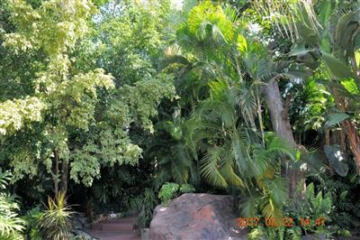 Protea Park property for sale. Ref No: 3055869. Picture no 35