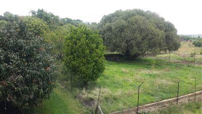 Farms for sale in Cullinan