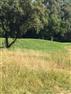 Parys, Parys Golf & Country Estate Property    Houses For Sale Parys Golf & Country Estate, Parys Golf & Country Estate, Vacant Land  property for sale Price:325,000