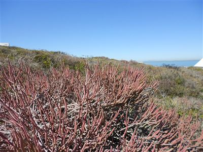 Yzerfontein property for sale. Ref No: 13474150. Picture no 7