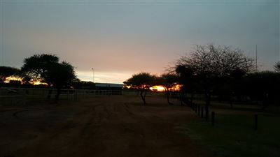 Farms for sale in Madikwe