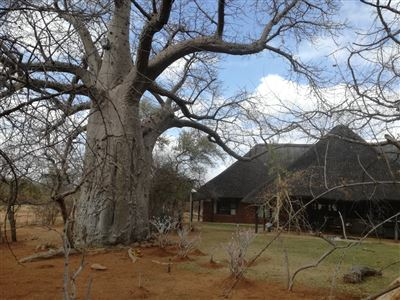 Musina, Musina Property  | Houses For Sale Musina, Musina, Farms  property for sale Price:15,000,000