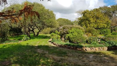 Paarl property for sale. Ref No: 13522299. Picture no 3
