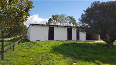 Paarl property for sale. Ref No: 13522299. Picture no 5