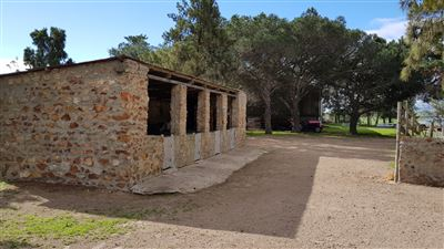 Paarl property for sale. Ref No: 13522299. Picture no 12