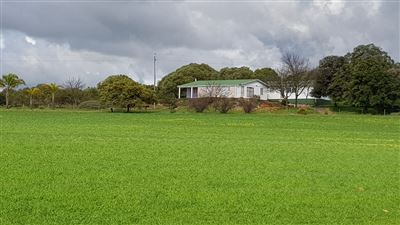 Paarl property for sale. Ref No: 13522299. Picture no 13