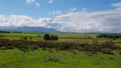 Paarl property for sale. Ref No: 13522299. Picture no 18