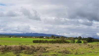 Paarl property for sale. Ref No: 13522299. Picture no 19