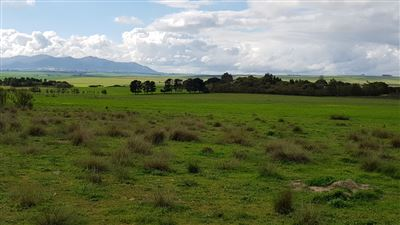 Paarl property for sale. Ref No: 13522299. Picture no 26