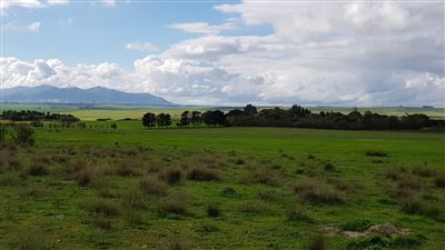 Paarl property for sale. Ref No: 13522299. Picture no 27
