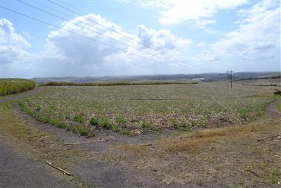 Umhlali property for sale. Ref No: 13525180. Picture no 1
