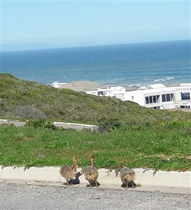 Yzerfontein property for sale. Ref No: 13350843. Picture no 8