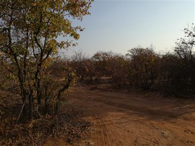 Musina for sale property. Ref No: 13526417. Picture no 1