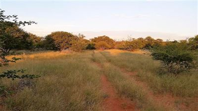 Lephalale property for sale. Ref No: 13533441. Picture no 3
