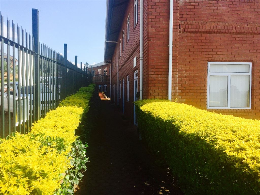 The pathway leading up to the entrance of the office