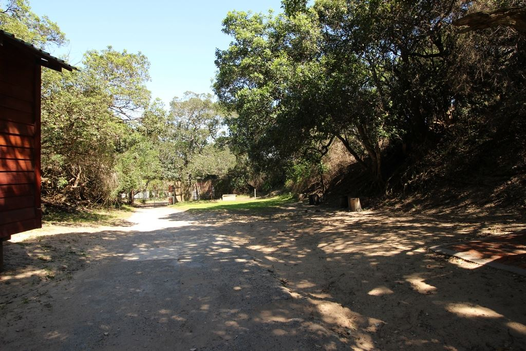 Roadway within the resort