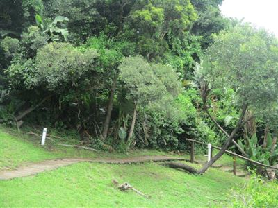 Port Edward property for sale. Ref No: 13541344. Picture no 45