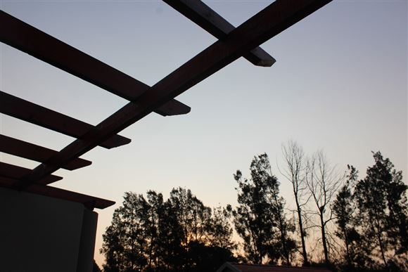 ...just imagine matured vines spilling off the top of these exposed timber butresses