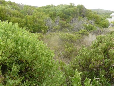 Property and Houses for sale in Stilbaai Oos, Vacant Land - ZAR 868,888