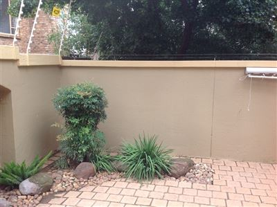 Morehill property to rent. Ref No: 13580849. Picture no 39