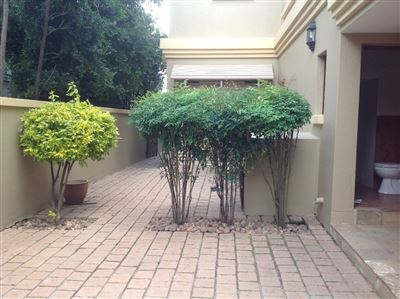Morehill property to rent. Ref No: 13580849. Picture no 28