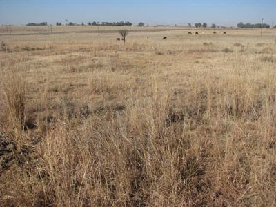 Vredefort property for sale. Ref No: 2675163. Picture no 2