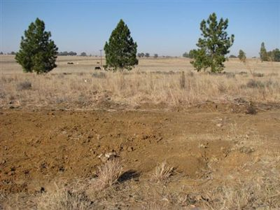 Vredefort property for sale. Ref No: 2675163. Picture no 5