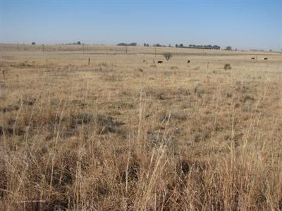 Vredefort property for sale. Ref No: 2675163. Picture no 10