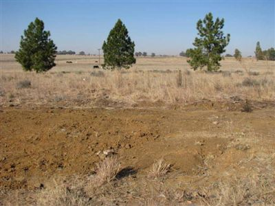 Vredefort property for sale. Ref No: 2675163. Picture no 17