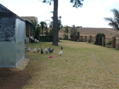 Witbank property for sale. Ref No: 2682058. Picture no 20