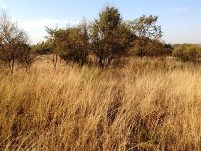 Leeuwfontein property for sale. Ref No: 3111095. Picture no 1